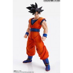 IMAGINATION WORKS Son Goku...